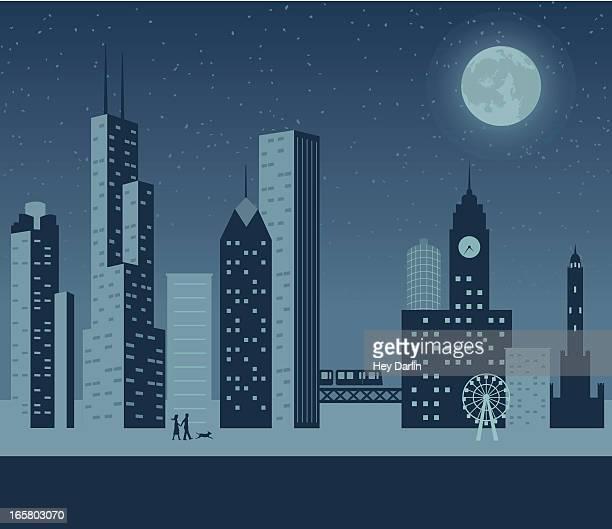 chicago night - chicago stock illustrations, clip art, cartoons, & icons