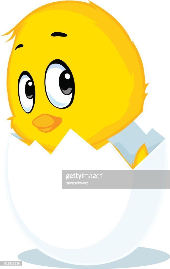 chicken born from eggshell - vector