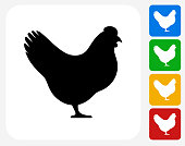 Chicken Icon Flat Graphic Design