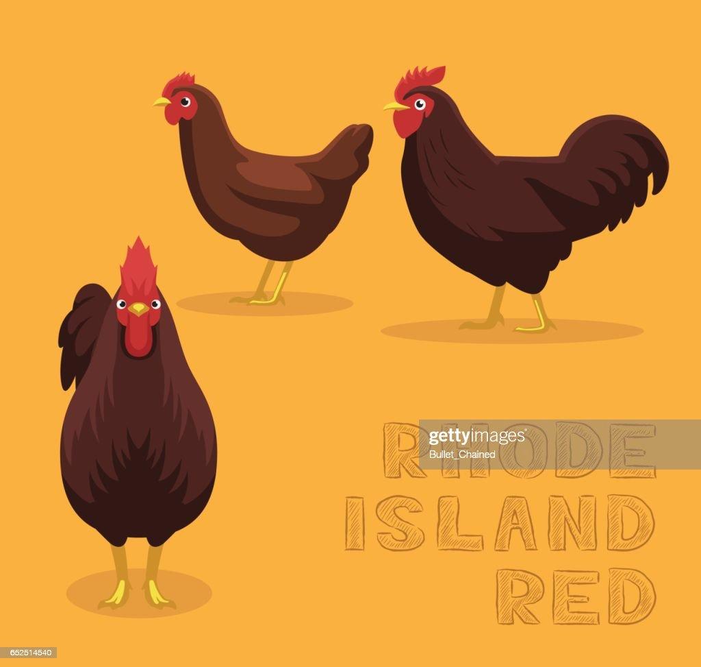 Chicken Rhode Island Red Cartoon Vector Illustration