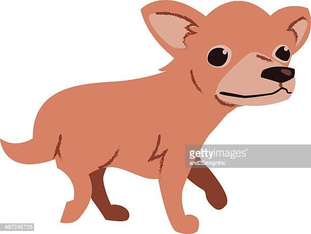 ilustraciones, imágenes clip art, dibujos animados e iconos de stock de chihuahua - animal vertebrado