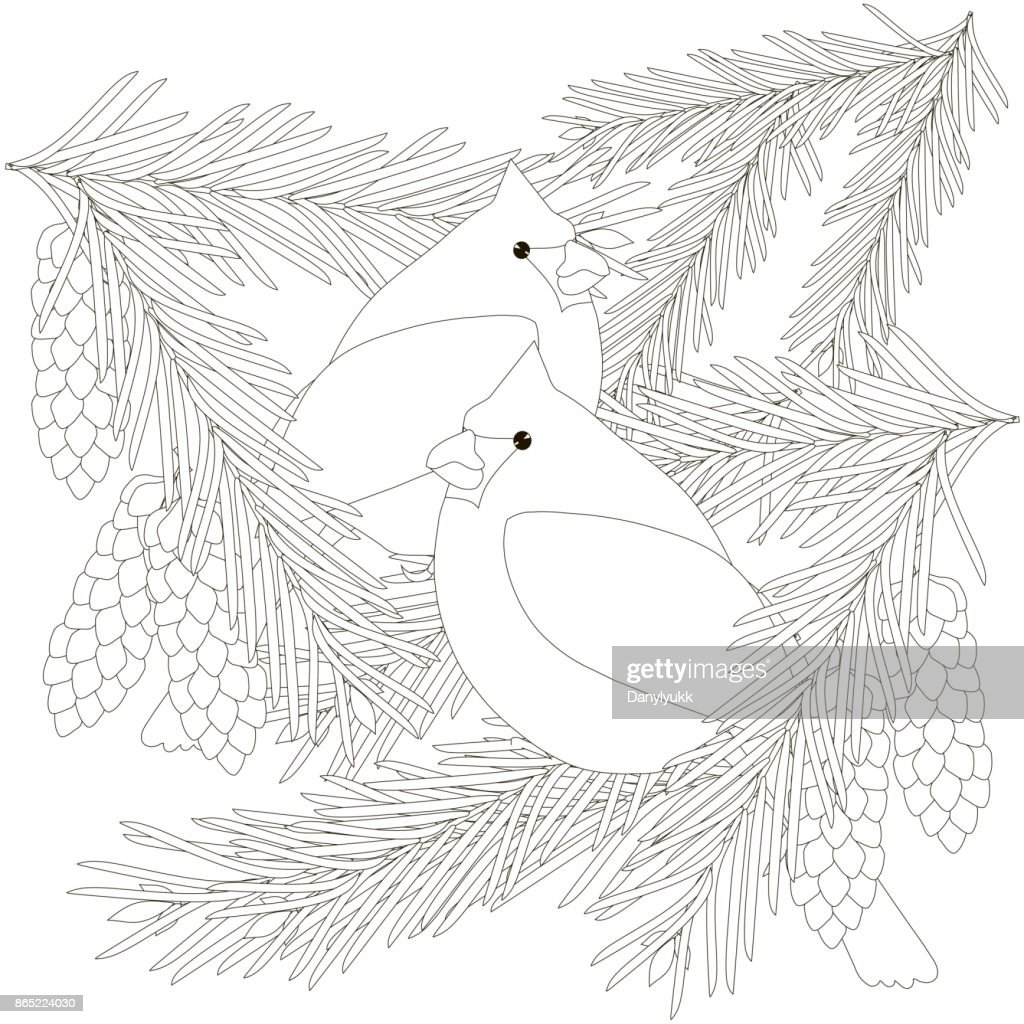 Children Coloring Page Stock Vector Illustration Cardinal ...