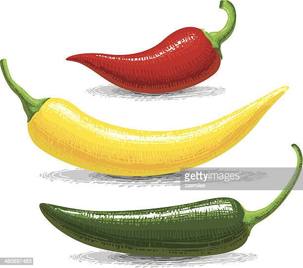 chili peppers - red chili pepper stock illustrations, clip art, cartoons, & icons