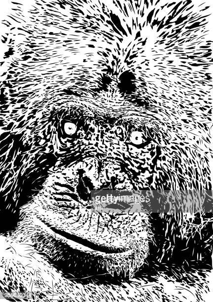 chimpanzee looking directly to the camera - chimpanzee stock illustrations, clip art, cartoons, & icons