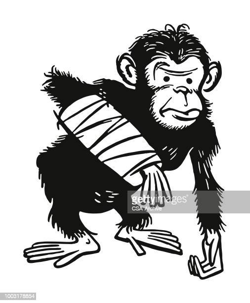 Chimpansee met een gebroken Arm