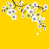 china red tree blossom vector illuustration