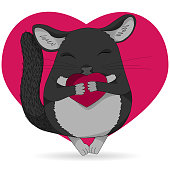 Chinchilla pet icon. Cute cartoon line art with details