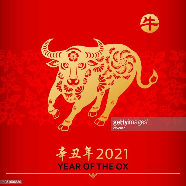 chinese new year ox - chinese couplet stock illustrations