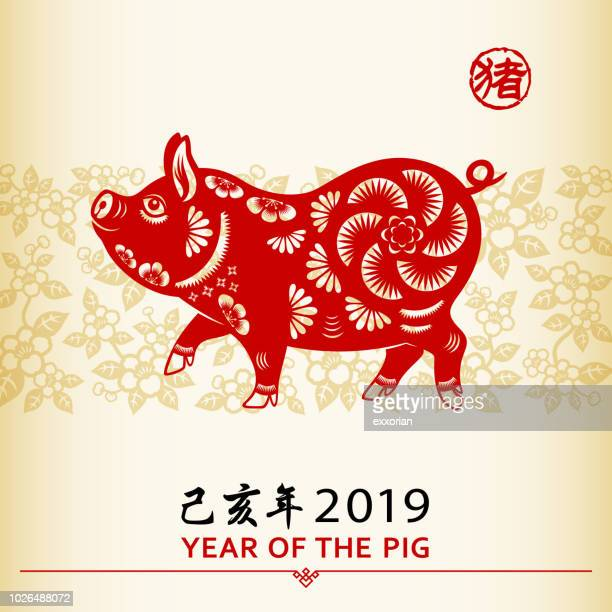 chinese new year pig - non western script stock illustrations