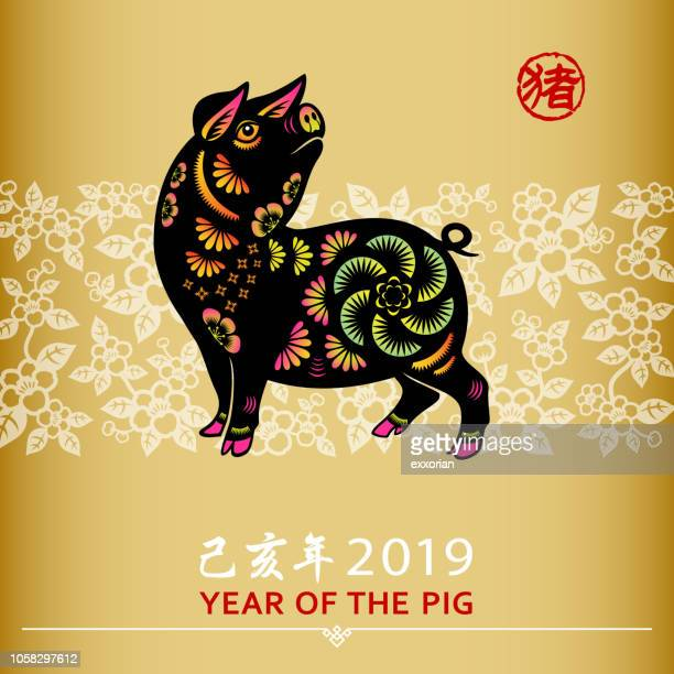 chinese new year pig - animal body part stock illustrations