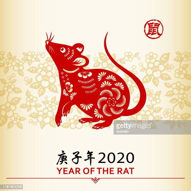 chinese new year rat - mammal stock illustrations