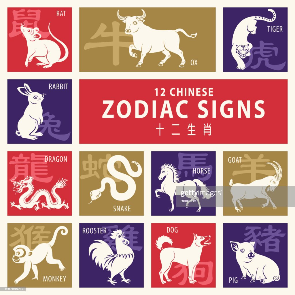 12 Chinese Zodiac Signs High Res Vector Graphic Getty Images