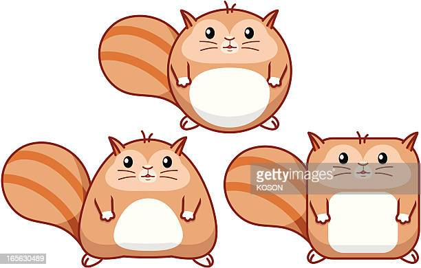 chipmunk cartoon - chipmunk stock illustrations