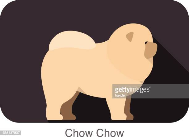 chow chow dog breed flat icon design - chow dog stock illustrations
