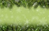 Christmas background green fir tree