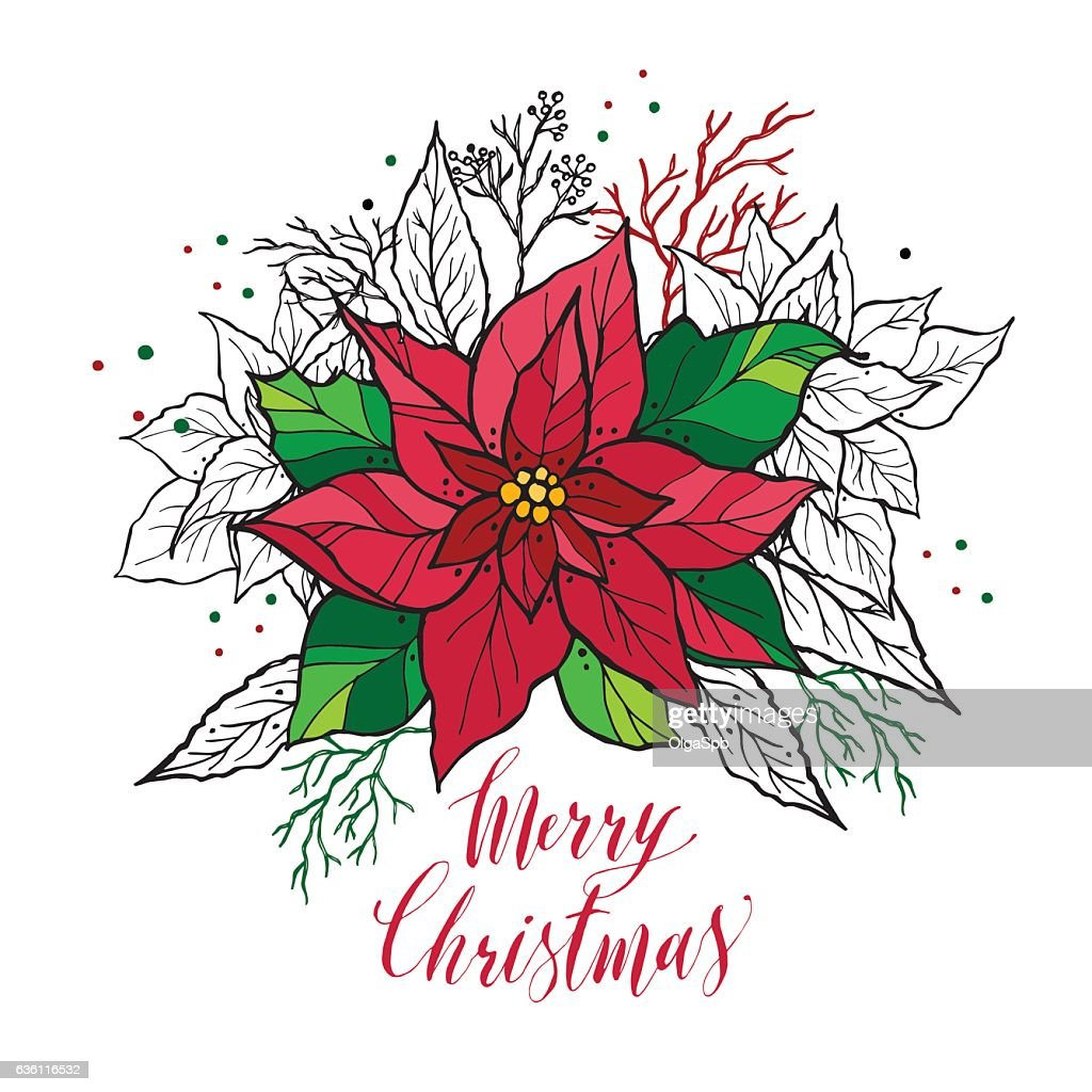 Christmas card of poinsettia with hand drawn lettering. Christma