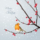 Christmas card with bird sitting on branch