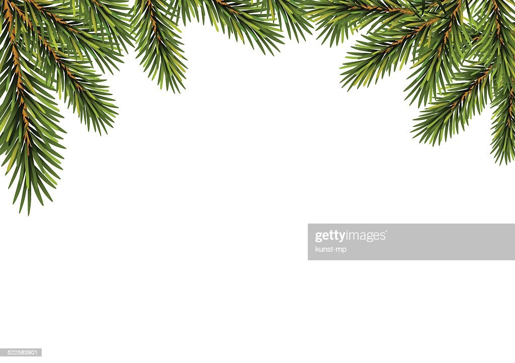 Christmas  fir tree branches
