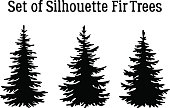Christmas Fir Trees Silhouettes