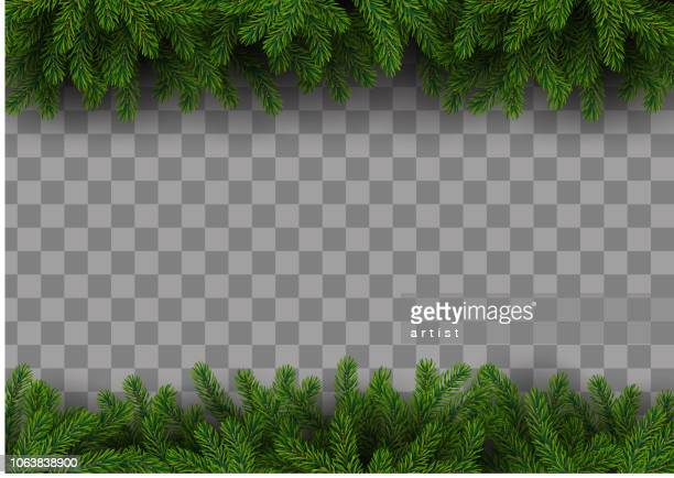 christmas frame with fir tree - spruce tree stock illustrations