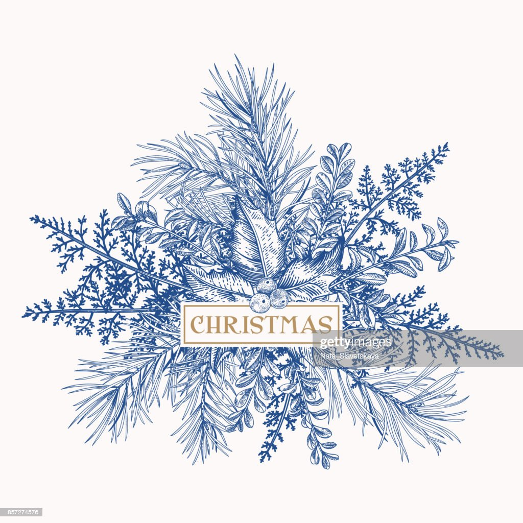 Christmas frame with pine, holly and ferns.