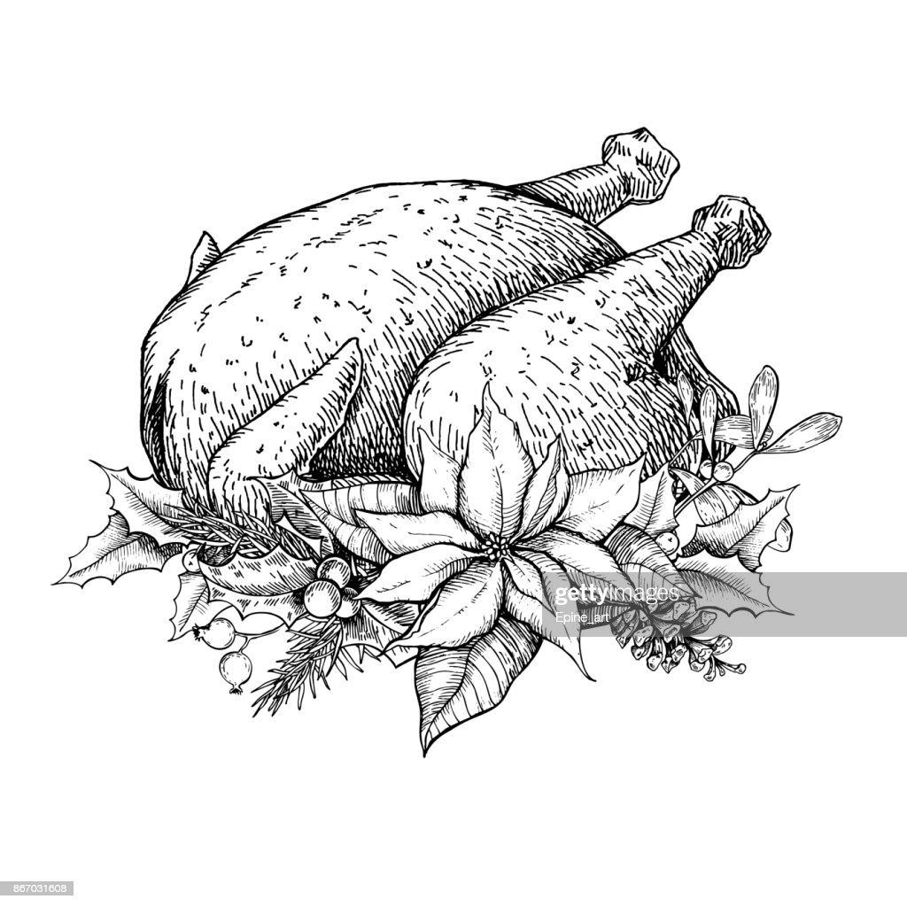 Christmas or thanksgiving turkey. Hand drawn vector illustration