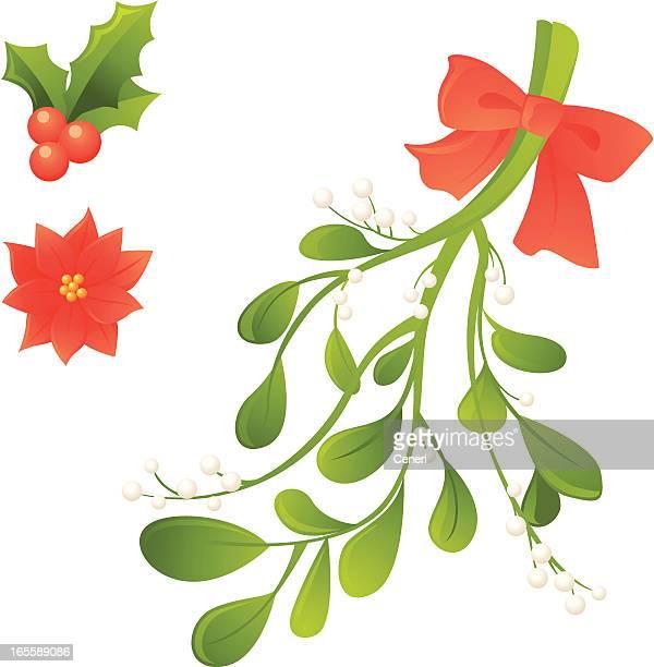 christmas plants: holly berries, poinsettia, mistletoe - mistletoe stock illustrations, clip art, cartoons, & icons