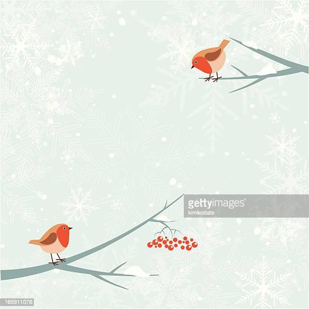ilustraciones, imágenes clip art, dibujos animados e iconos de stock de navidad robin pájaro - linda rama