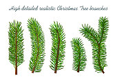 christmas tree branches isolated