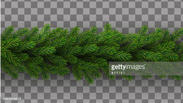 christmas wreath with fir tree - spruce tree stock illustrations