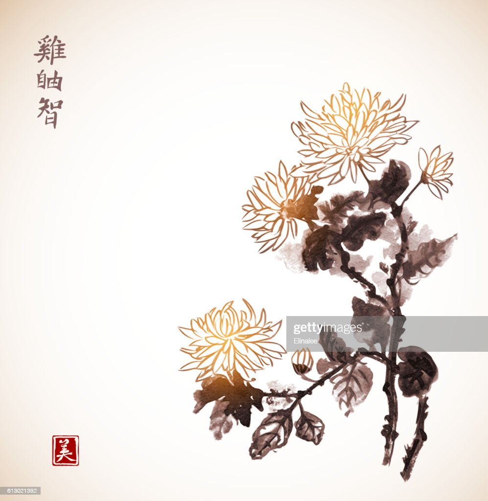Chrysanthemum flowers in vintage style. Traditional oriental ink painting sumi-e,