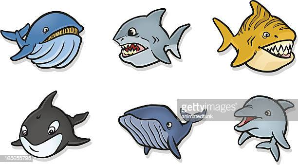 chubby fish icons - killer whale stock illustrations, clip art, cartoons, & icons