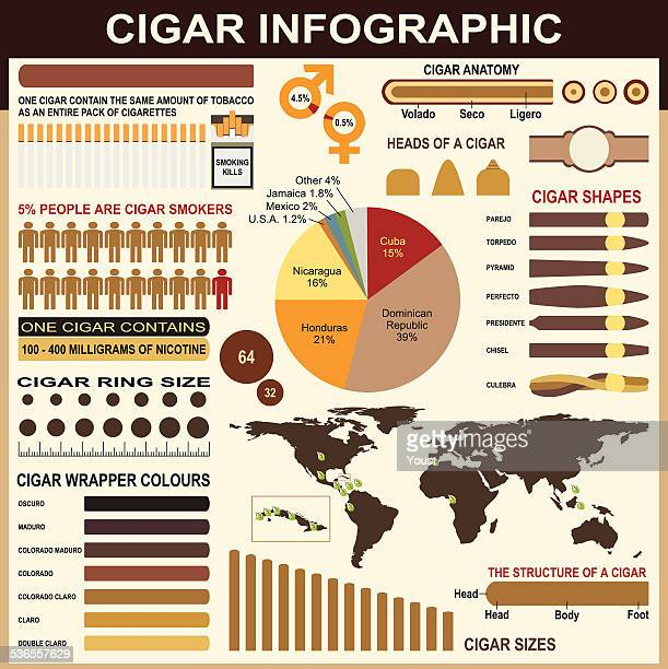 cigars infographic elements - cuban culture stock illustrations, clip art, cartoons, & icons