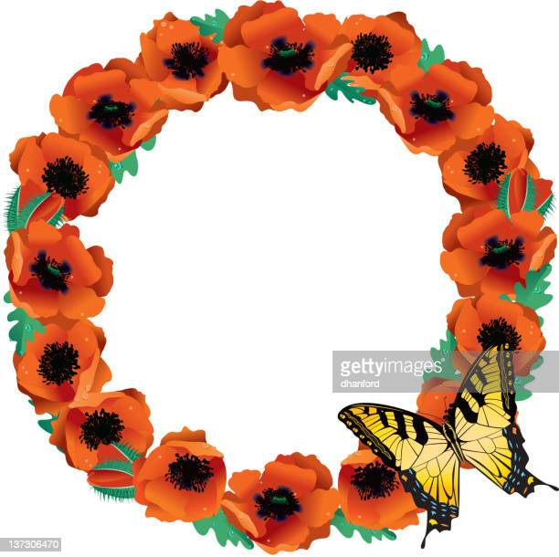circle of bright orange poppies with butterfly - oriental poppy stock illustrations, clip art, cartoons, & icons