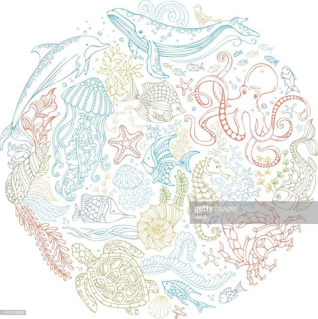 Circle vector set of ocean animals and plants contours.