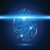 Circuit Board Fingerprint, Vector