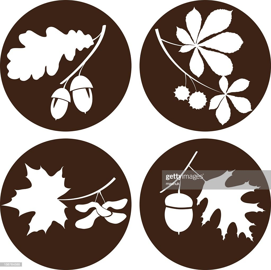 Circular images of branches and acorns