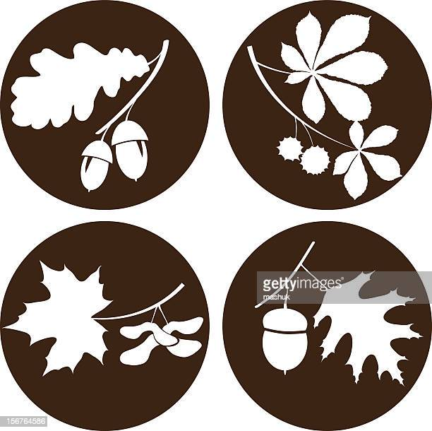 circular images of branches and acorns - oak leaf stock illustrations