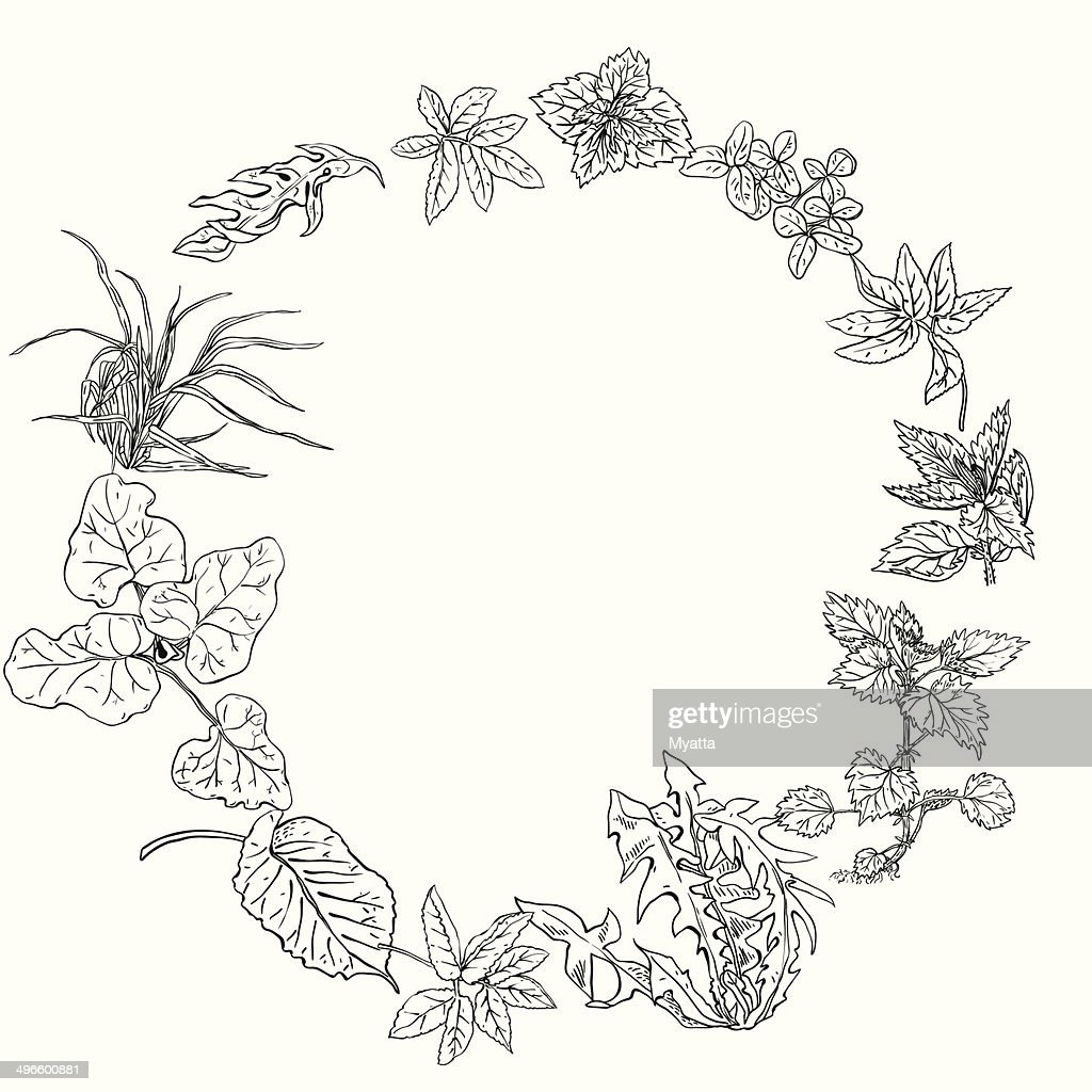 Circular pattern, wreath of herbs