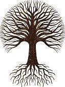 Circular tree and roots logo