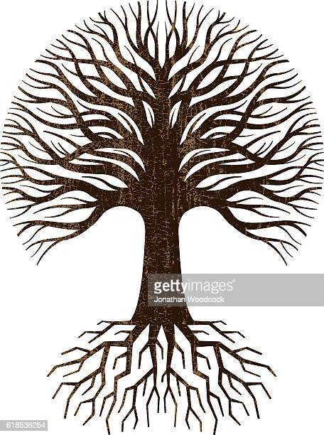 circular tree and roots logo - root stock illustrations, clip art, cartoons, & icons