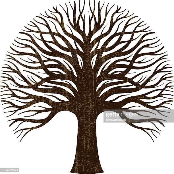 circular tree logo illustration - tree trunk stock illustrations, clip art, cartoons, & icons