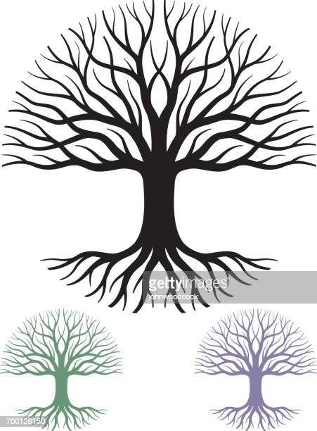 circular tree  vector illustration - tree stock illustrations, clip art, cartoons, & icons
