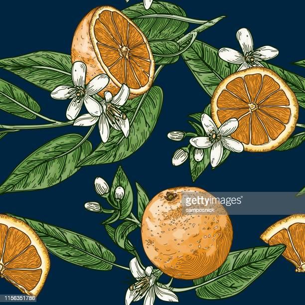citrus and orange blossom vintage retro style seamless pattern - navy blue stock illustrations