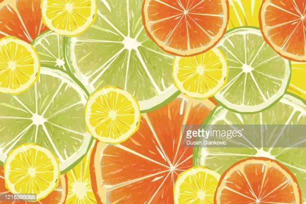 citrus fruit background - lemons, oranges and limes stock illustration - lemonade stock illustrations