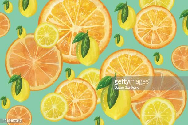 zitrusfrüchte hintergrund - scheiben von zitronen und orangen lager illustration - orangensaft stock-grafiken, -clipart, -cartoons und -symbole