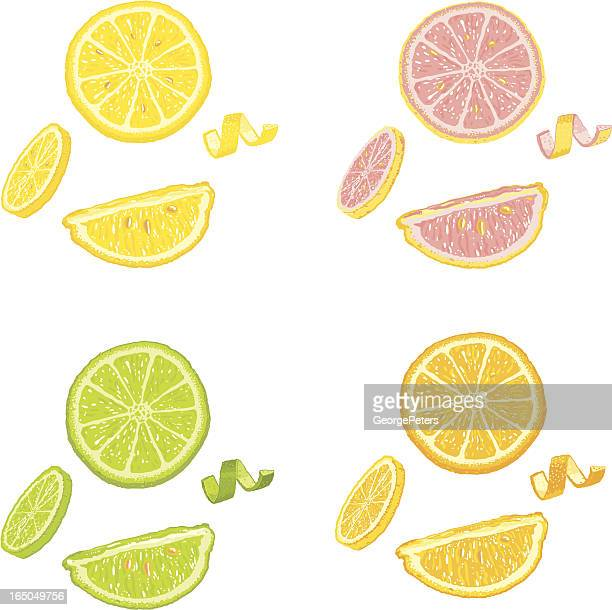 Citrus Fruit Slices and Wedges