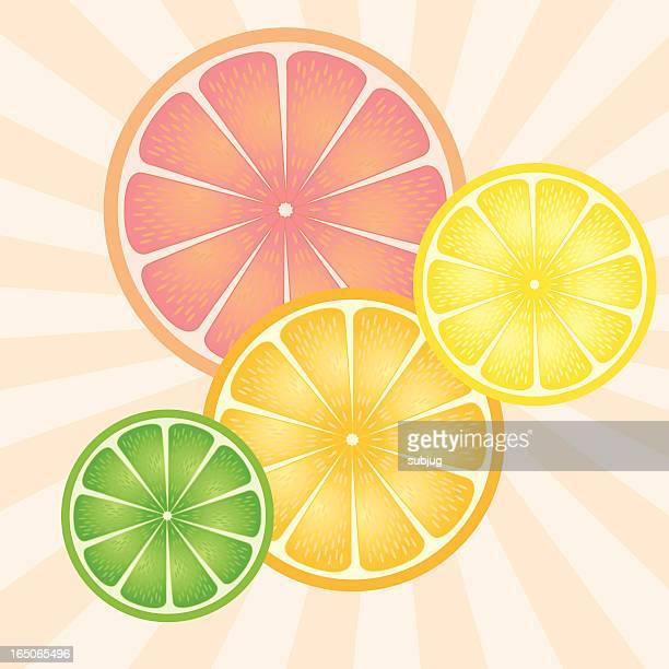 ilustraciones, imágenes clip art, dibujos animados e iconos de stock de citrus - pomelo rosa