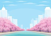 city and cherry blossoms