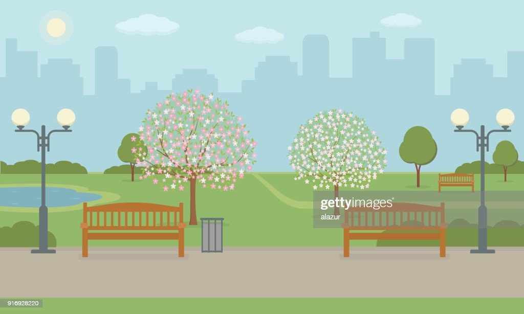 City park with benchs, lawn and blooming trees.